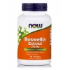 Boswellia Extract 500 mg Softgels